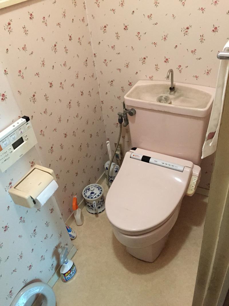 Before:既存トイレの水量は省エネタイプのなんと3倍!
